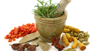 Herbs for getting rid of worms